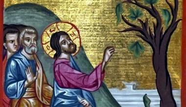 Que Árvore Ficava no Jardim do Éden e Por que Jesus a amaldiçoou?
