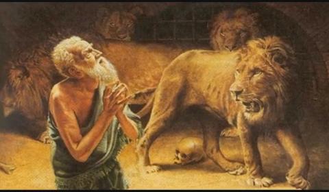 Justifikime të koronavirusit për t'i shpëtuar shpellës së luanëve