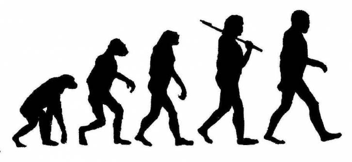 public://users/84/images/2017/09/22/evolution.jpg