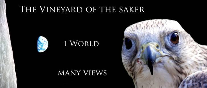 public://users/84/images/2017/09/25/the-vineyard-of-the-saker-dr.jpg